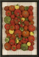 Homegrown Tomatoes by Martina Celerin